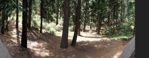 Nabbed ourselves a nice little patch of the Stanislaus National Forest, where Sammy will kill ALL THE SQUIRRELS.